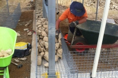 Greyhound Adoption Program Gabion wall build